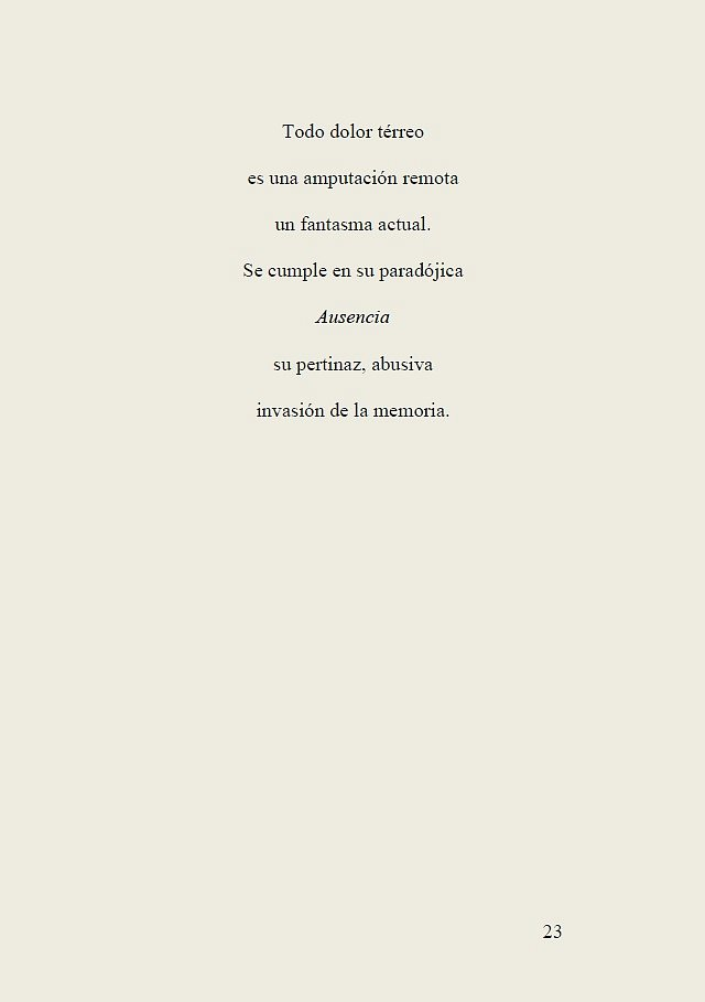 Luz-del-recuerdo-23.jpg