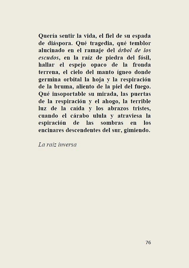 Los-arboles-solitarios-76.jpg