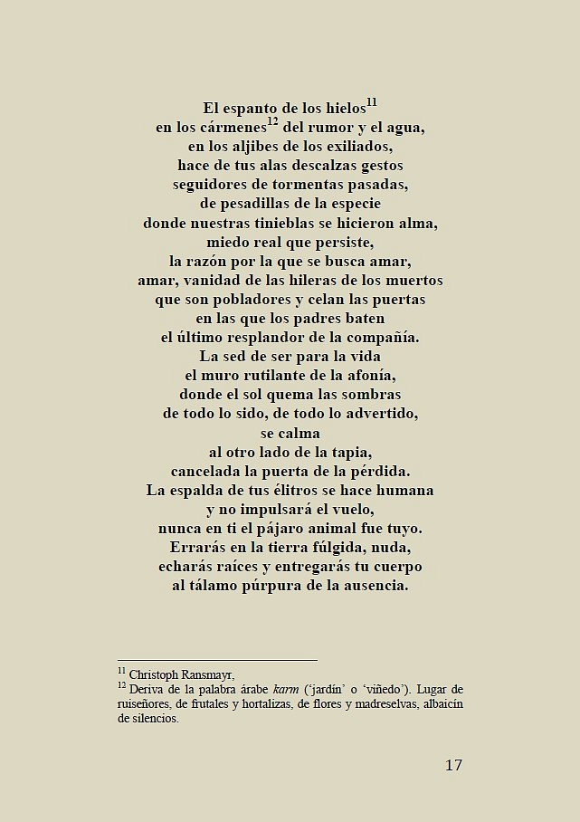 La-mujer-rota-017.jpg
